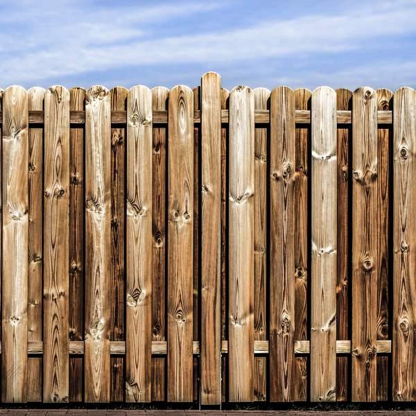 Fencing Maze Nails